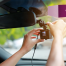 What's the Best Dash Cam for Your Car?