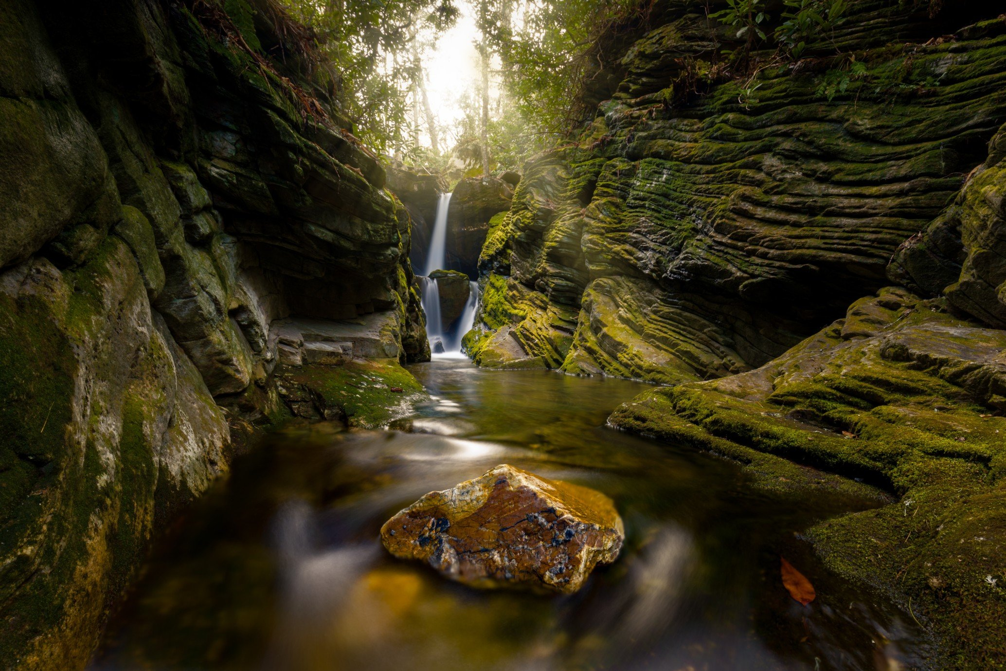 The Pisgah National Forest Road Trip Guide